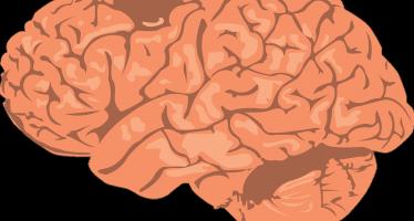 Una pastilla diaria cambia el rumbo de la esclerósis múltiple