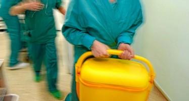 España bate records de donantes de órganos