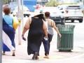 Descubren cómo activar la grasa parda
