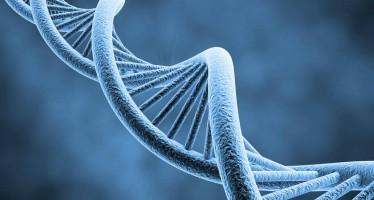III Simposio Nacional de Genómica Aplicada en Oncología