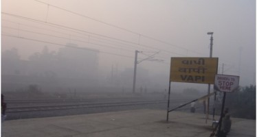 El 23% de la mortalidad mundial se puede atribuir a causas ambientales