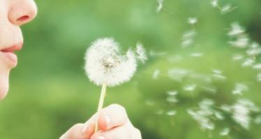 La alergia afecta a más del 30 por ciento de la población