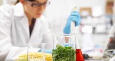 La AECC convoca una ayuda  para promover la investigación en tumores poco frecuentes