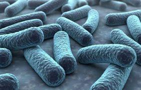 La disbiosis, clave en las patologías infantiles