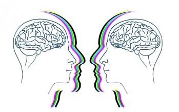 Una investigación afirma que los genes de la esquizofrenia están conectados a una reducción del hipocampo
