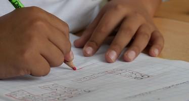El 25% de los escolares padece defectos visuales