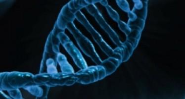 Fallos genéticos provocarían mayor riesgo de diabetes tipo 2