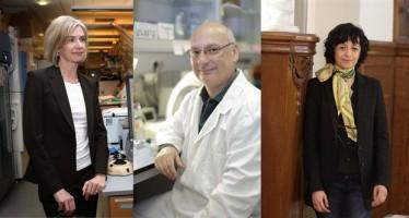 La Fundación BBVA premia el corta y pega genético