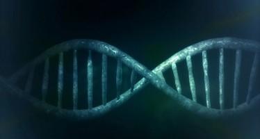 Edición de genes simplificada para la investigación.