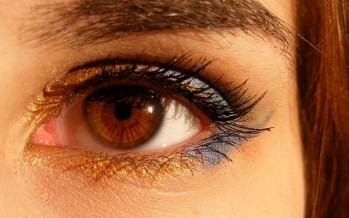 Relacionan un ácaro con algunos tumores malignos del párpado del ojo