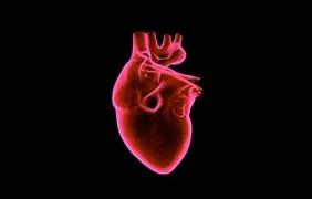 Llega a España el primer Microordenador intercardíaco