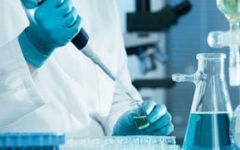 Alzheimer: Un fármaco anticoagulante retrasa la aparición de la enfermedad en ratones