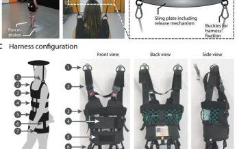 Diseñan un arnés robótico para la rehabilitación de pacientes con ictus