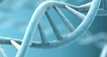 Aprobada la primera terapia génica contra la leucemia