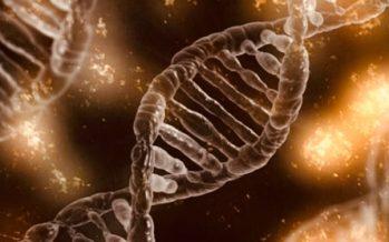 Los principales avances científicos en 2017