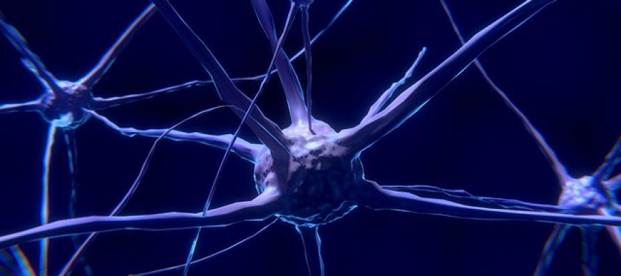 Nuevos abordajes en esclerosis múltiple