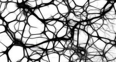 Hallada la proteína que aumenta el riesgo de padecer Alzheimer en diabéticos