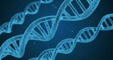 Cada vez más cerca de la terapia génica