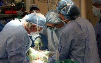 España, líder mundial en donación y trasplantes