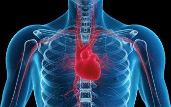 Bayer y FEC lanzan un vídeo sobre enfermedades cardiovasculares