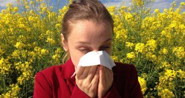 Una de cada cuatro personas sufre algún trastorno alérgico en España