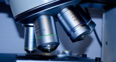 Más de 400 especialistas en reproducción asistida se dan cita en Barcelona