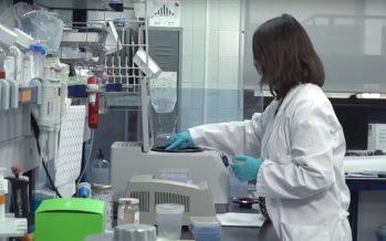 La investigación del cáncer en España
