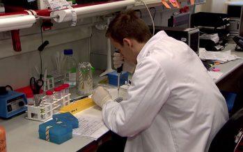 El 80% de los casos de cáncer de páncreas no se detectan a tiempo
