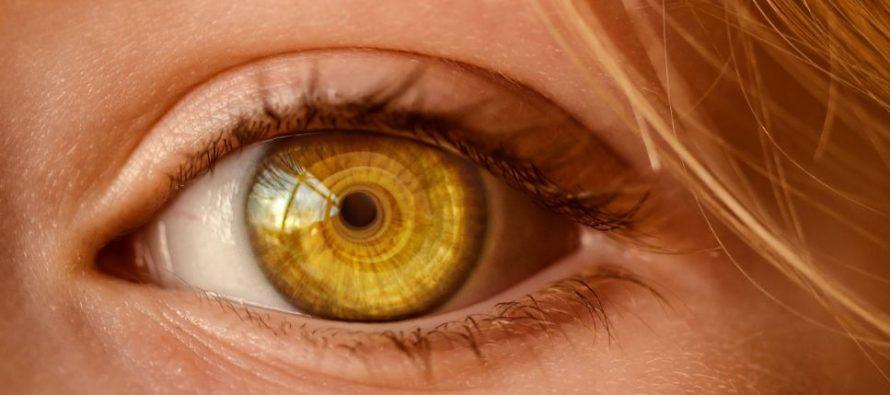 El Hospital de Torrevieja corrige glaucomas con implantes microscópicos