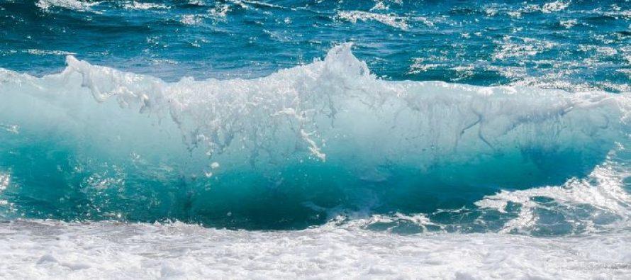 El plasma marino alimenta las células cutáneas y se convierte en un potente antiaging