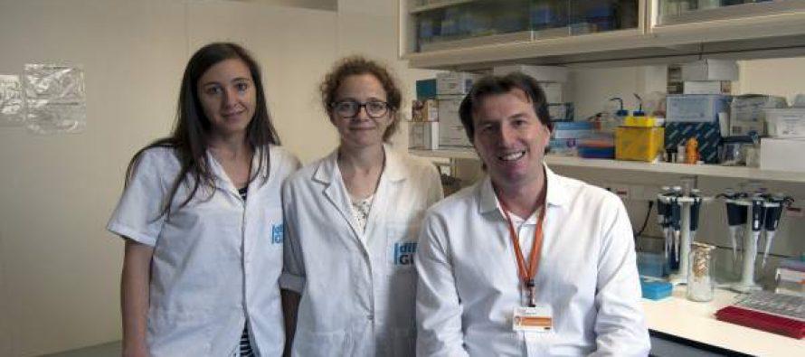Descubren un mecanismo antienvejecimiento en un fármaco usado contra la diabetes
