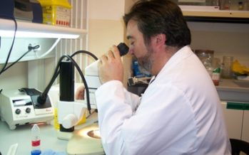 """S. Martínez: """"Con terapias avanzadas prolongaremos la supervivencia de pacientes con ELA"""""""