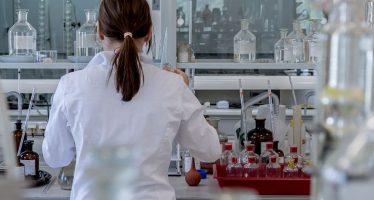 Un hígado 'in vitro' permite analizar la toxicidad de fármacos