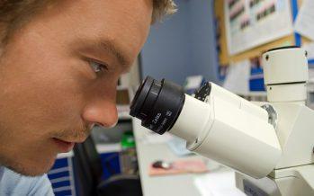 Investigan el uso de la inmunoterapia para tratar el cáncer de mama