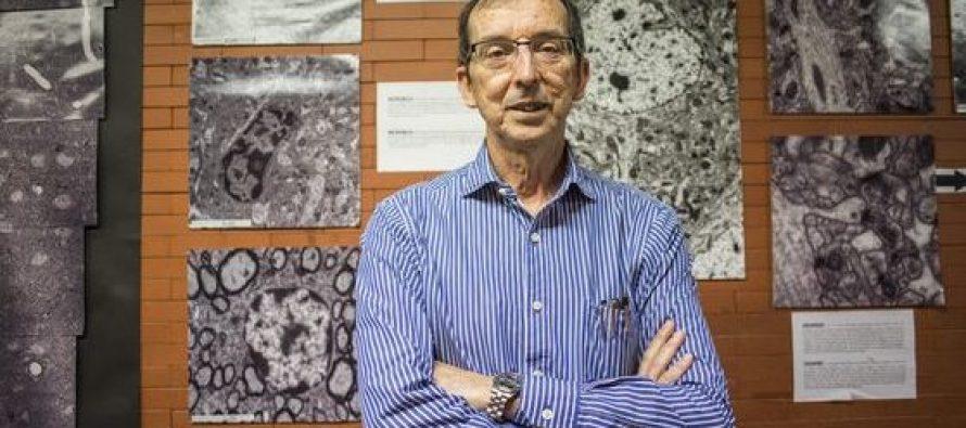 """J.García: """"Debemos apostar por la plasticidad, la conectividad y la protección del cerebro"""""""