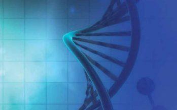 Genómica: saber qué alteración genética provoca un tumor para realizar un tratamiento dirigido