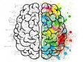 Efectos neurológicos de la Covid-19
