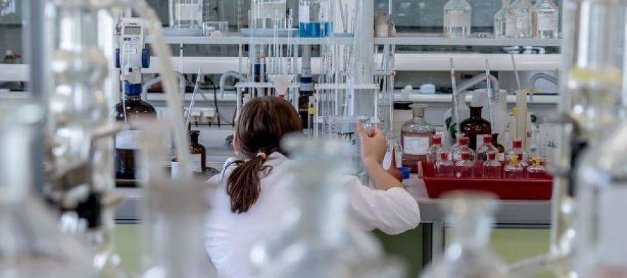 Una investigación de la UPV-EHU identifica la atrofia en el cerebro por Parkinson