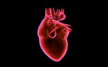 La Inteligencia Artificial previene enfermedades cardiovasculares