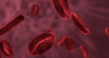 Un nuevo dispositivo permite que el paciente controle su dosis de anticoagulante