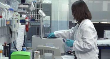 MATRIX, proyecto de la Jiménez Díaz y el CNIC para realizar tratamientos innovadores