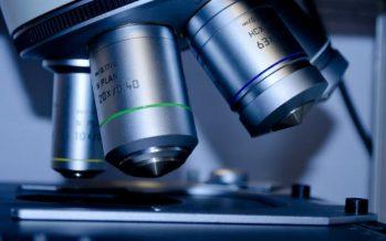 Investigadores aíslan células madre del cáncer de mama con tecnología 3D en España