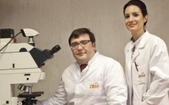 Cáncer de próstata y cáncer de mama: Investigadores del CNIO confirman el nexo entre ambos