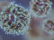 Concluye el ensayo de la primera inmunoterapia española