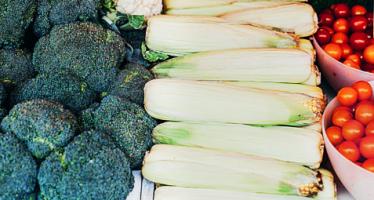 Científicos concluyen que hay que duplicar el consumo de frutos secos y vegetales y reducir el azúcar