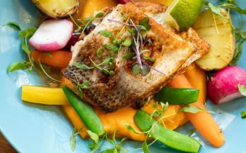 Elhierro de carnes y pescados se absorbe 5 veces más que el de verduras y legumbres
