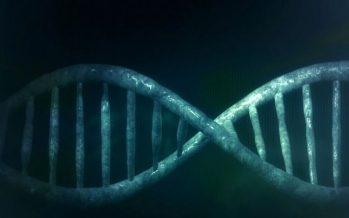 Enfermedad genética: Más del 8% de la población la manifestará a lo largo de su vida