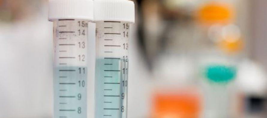 El Vall d'Hebron demuestra que los antibióticos combinados con quimioterapia pueden disminuir el crecimiento del tumor