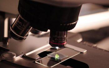 Fundación ASISA y la Universidad de Harvard convocan una beca para la investigación clínica