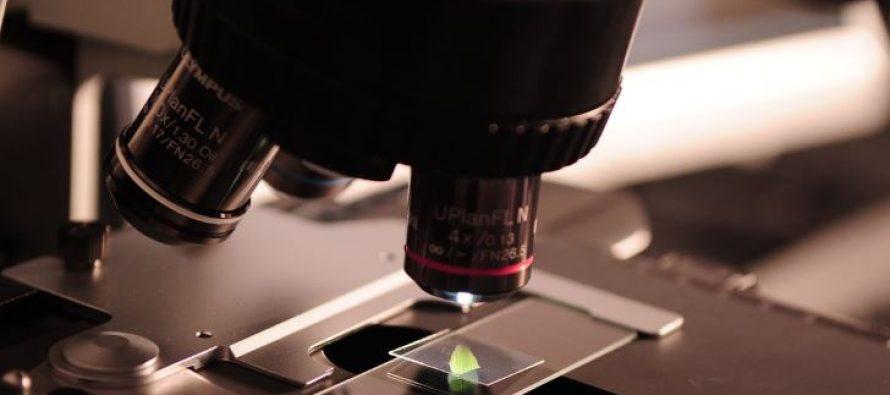 Ocho centros de investigación españoles buscan solución al coronavirus